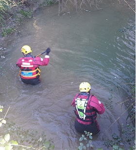 Two members of Midshires Search and Rescue searching a brook during an operation. They are helmeted and wearing full protective,  water-clothing and are almost waist deep in water, searching underwater using long search poles.